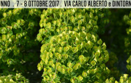 Flor autunno 2017 – 7 e 8 ottobre
