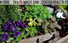 Follia in Fiore 2018 – 24 e 25 marzo