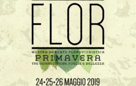 Flor primavera 2019 // 24-25-26 maggio 2019